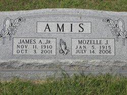 James Alexander Amis, Jr