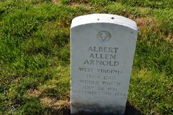 Albert Allen Arnold