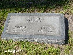 David I Ames