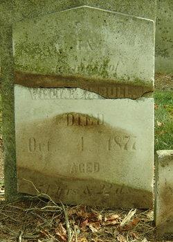 William Henry Bull