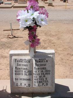 Francisco Bacahui Montano
