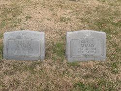 Greg F Adams