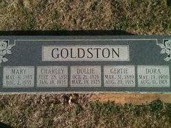 Charles Leander Goldston