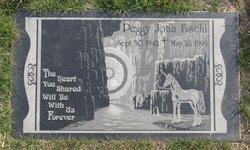Peggy Joan Fischl