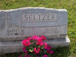 Harvey Milton Seltzer
