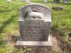Anita June King