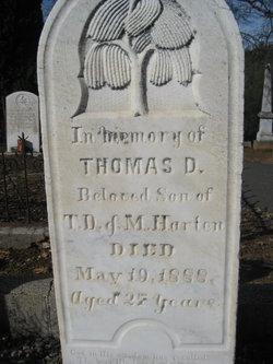 Thomas D Harten