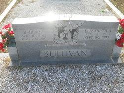 Elizabeth I Sullivan