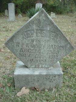 James Hardin