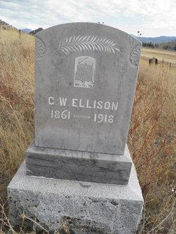 George Washington Ellison