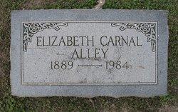 Elizabeth <i>Carnal</i> Alley