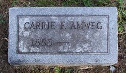 Carrie F. <i>Kelly</i> Amweg