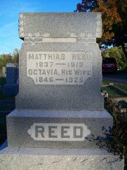 Matthias Reed
