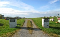 New Vine Run Cemetery