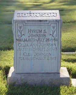Celia Ann <i>Johnson</i> Johnson