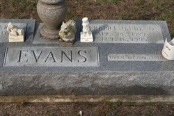 Herbert Evans, Jr