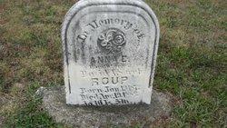 Anna E Raup