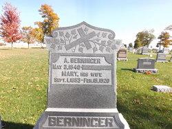 Alexander Berninger