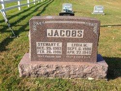Stewart E Jacobs
