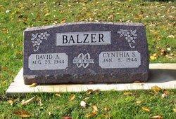 David A Balzer