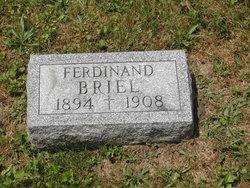 Ferdinand Briel