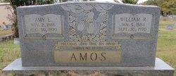 Amy E. Amos