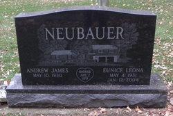 Andrew James Neubauer