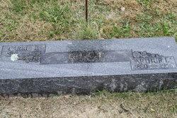 Arthur Lemuel Rice