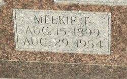 Mickie F. <i>Wylie</i> Aughtry