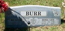Rosa Lee <i>Ellison</i> Burr