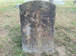 Julia Frances <i>Sullivan</i> Barnes