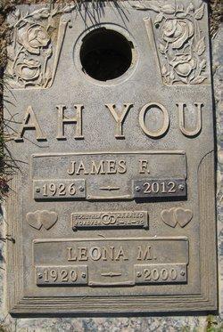 James F. Ah You
