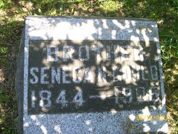 Seneca N Gould