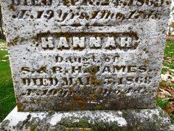 Hannah C. James