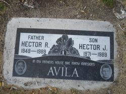Hector J Avila