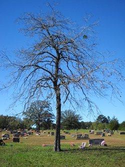 North Redland Cemetery
