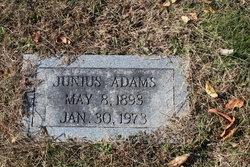 Jenius June Adams