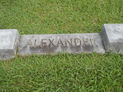 Minnie Lee Alexander