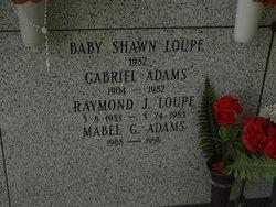 Raymond J. Loupe