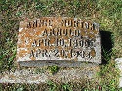 Annie Norton Arnold