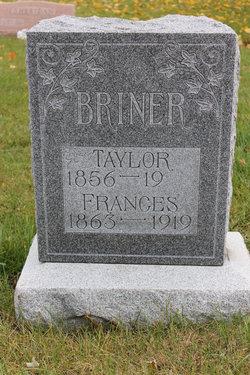 Sarah Frances <i>Athy</i> Briner