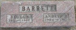Andrew P Barrett