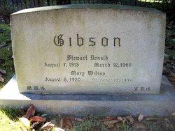Mary <i>Wilson</i> Gibson