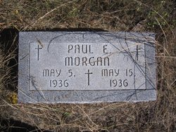 Paul Edward Morgan