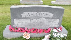 Dorothy Fern Amicone
