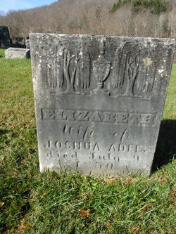 Elizabeth <i>Peters</i> Adee