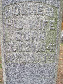Mary Owen Mollie <i>Wade</i> Tichenor