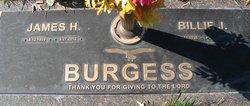 James H Burgess