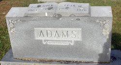 Leta M Adams