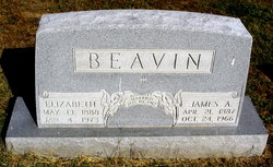 James Adrian Beavin, I